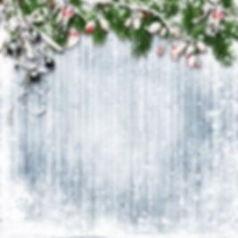 darkroom_days_backdrop_christmas.jpg