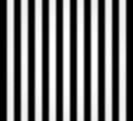 darkroom_days_backdrop_blackstripes.jpg