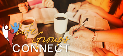 Life Groups Connect