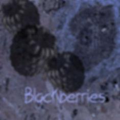ketofoodblackberries.jpg
