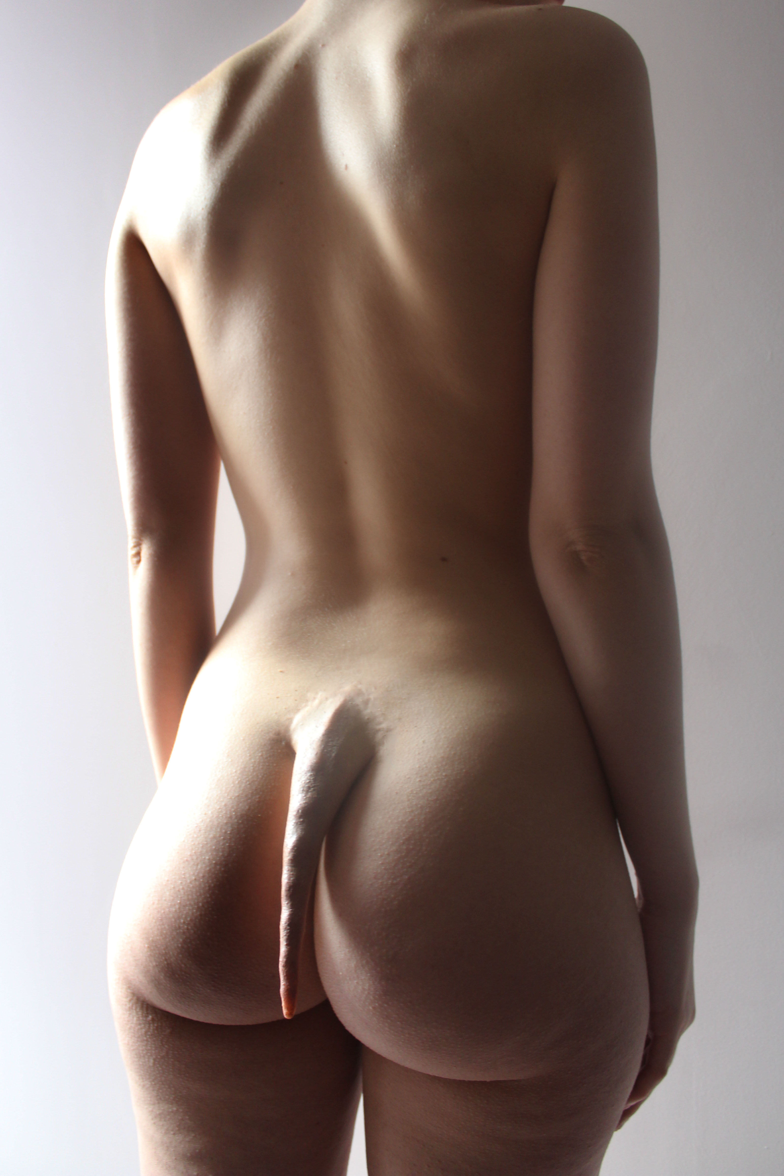 Tail edit 2.jpg