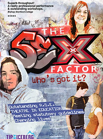 The Sex Factor relationship and sex education