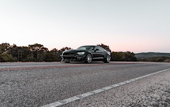 Mustang-30.jpg