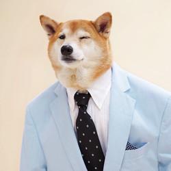 MAY19_ML)MENSWEAR_DOG__Ange edit