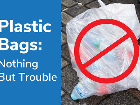 Plastic Bags: Nothing But Trouble