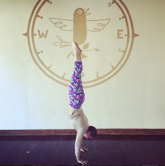 Co-Founder Liza Laird in her favorite position when not knitting is upside down.