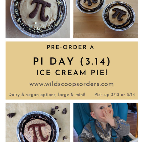 Pi Day Pies!