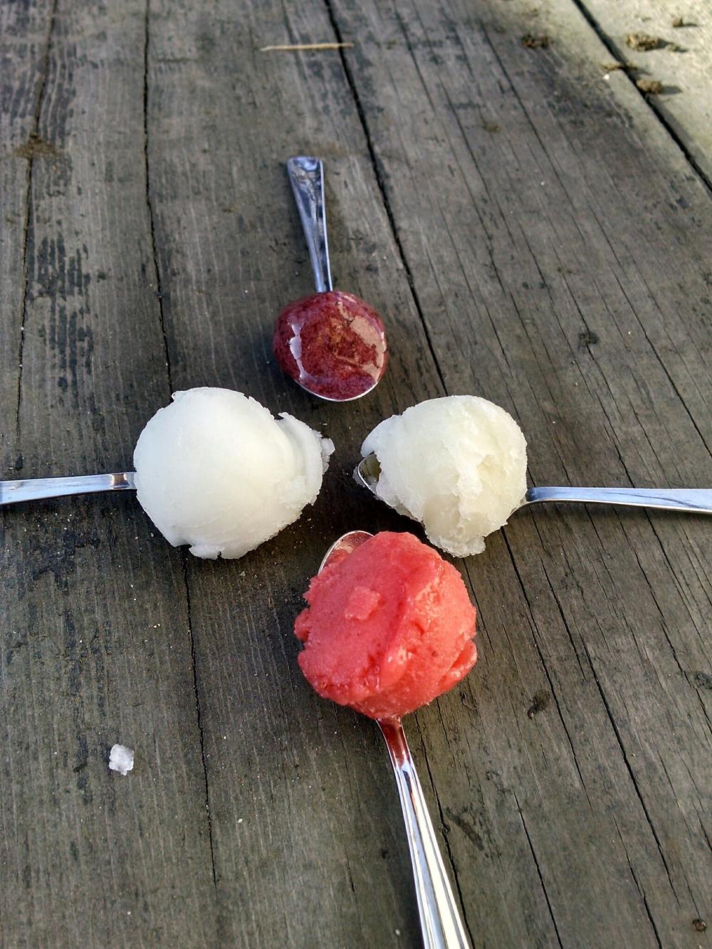 all sorbet 4 spoon.jpg