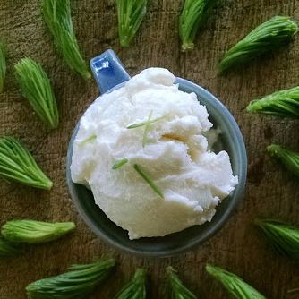 spruce tip ice cream