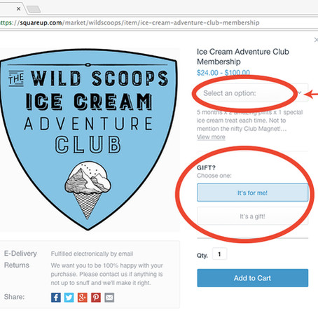 Wild Scoops Club gift guide