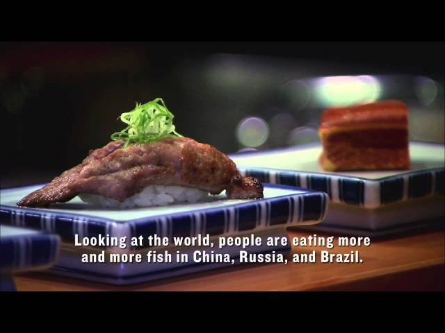 Sushi: the global catch cookingwiththehamster