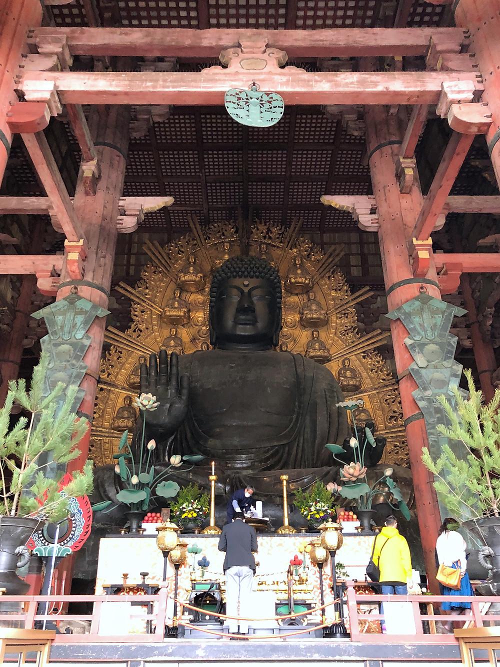 todaiji buddha nara giappone cookingwiththehamster