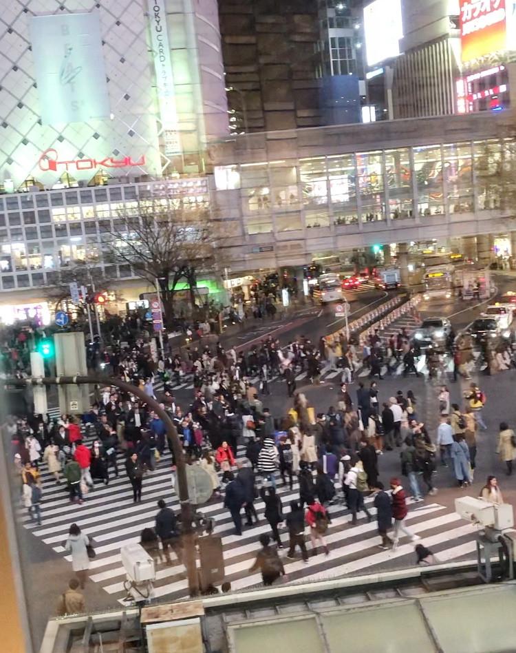 Shibuya crossing tokyo Cookingwiththehamster