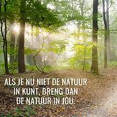 de natuur in jou ig.jpg