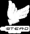 logo estead drone, agence de production audiovisuelle spécialisée dans le drone