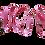Thumbnail: Pink Dog Lead