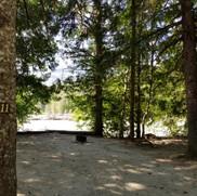 River site 11