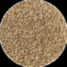 quinoa3.png