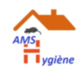 Logo-AMSH-V.bmp