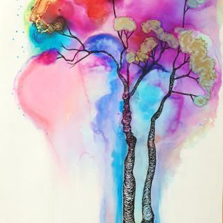Gum tree aura