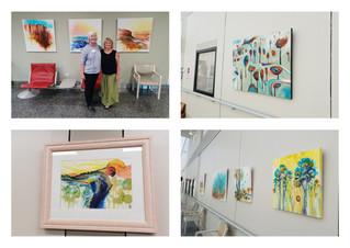 Solo Exhibition at The John Hunter Hospital - Arts for Health.