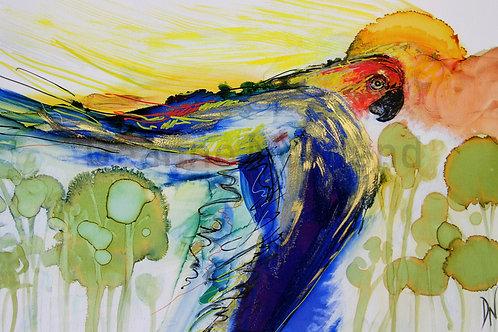 """Sun Conure"" Limited Edition Giclee Fine Art print"
