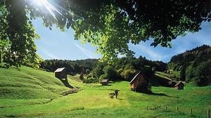 Murgtal-Schwarzwaldtoruismus.png