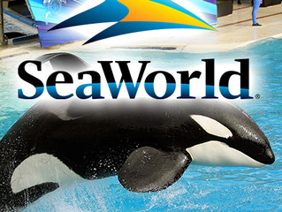 UVG is Coming to SeaWorld!
