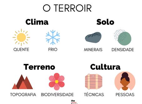 O terroir – ou por que é que os vinhos são diferentes?