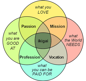 The definition of Ikigai and everything around