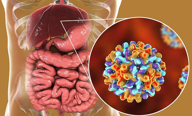 karaciğer kanseri.jpg