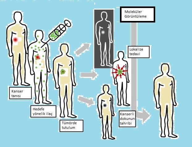 Moleküler Tedaviler