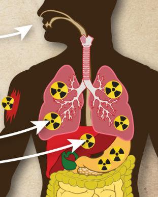 contamination_versus_exposure.jpg