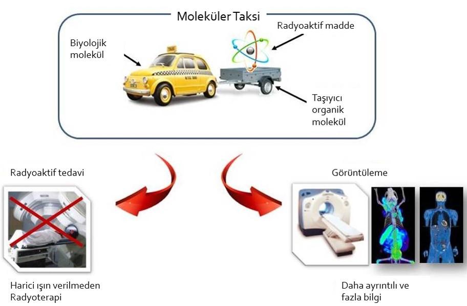 Moleküler Tedavi Temel Prensibi