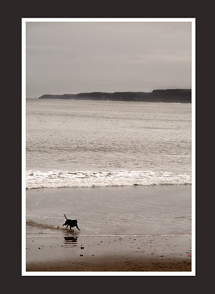 Scarborough 2012 framed print