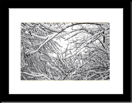Framed Snow Scape