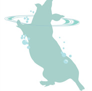 The Water Pig
