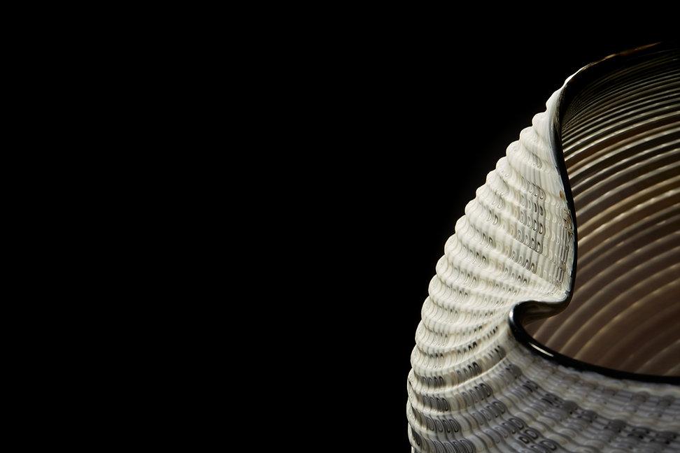 Mandala Detail.jpg