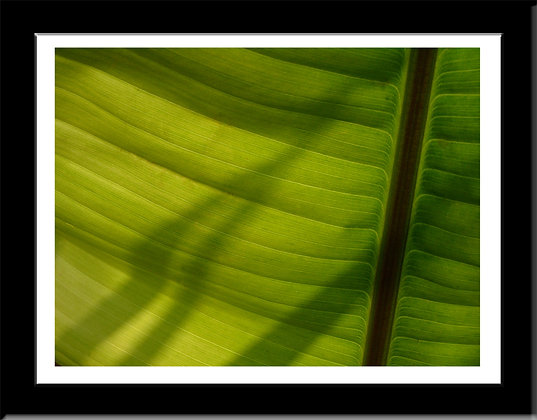Composition with Green framed print
