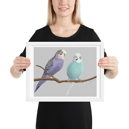 Budgies in Purple and Blue framed drawing