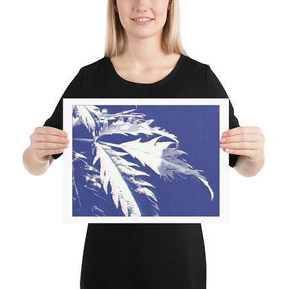 Blue Leaf Print