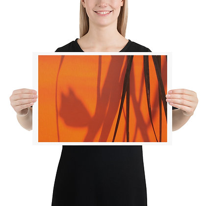 Shadows on Orange unframed photograph