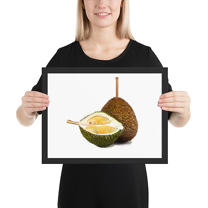 Durian framed drawing