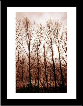 February 2013 framed print
