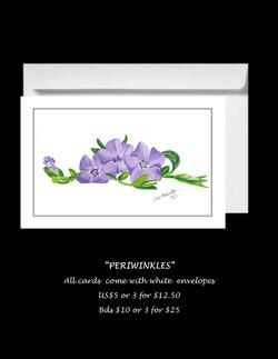 Periwinkles-20