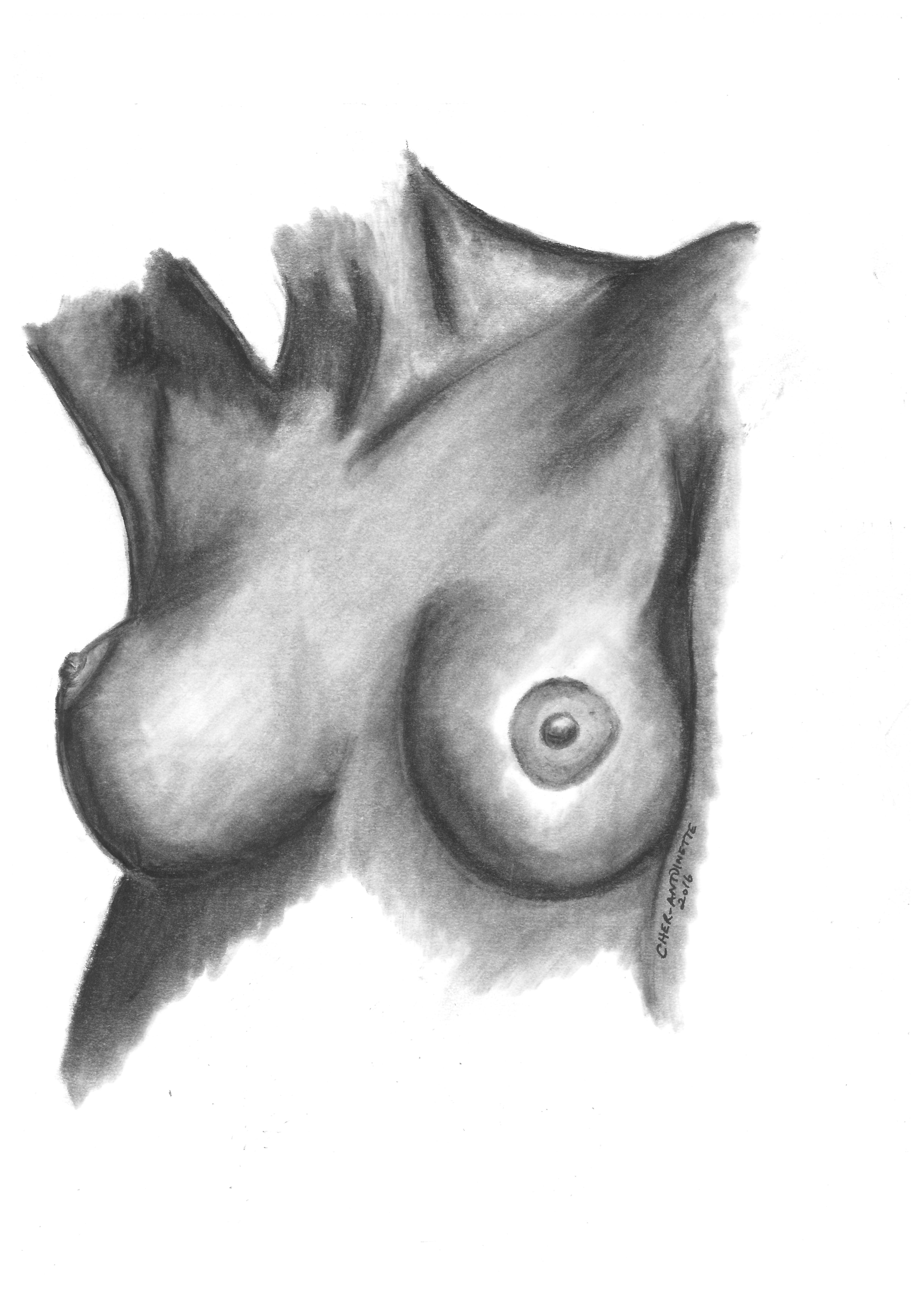 BREASTS 1