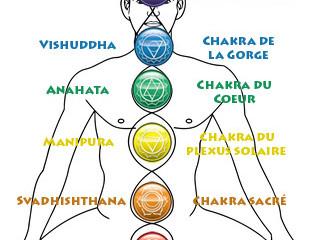 Les Chakras et les huiles essentielles