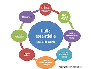 Les critères d'une huile essentielle HECT