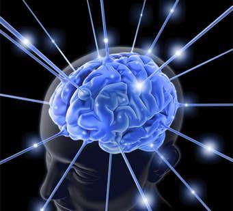 A revolução do cérebro