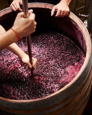 와인 만들기